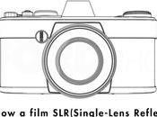 ¿Qué cámara fotos comprar?