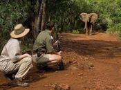 Safaris Sudáfrica
