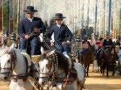 Feria Caballo Jerez Frontera