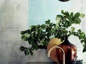 espacios vida, carecen personalidad. añade plantas