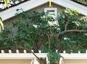 Cómo transformar garaje casita cottage