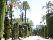 Sumergete Parque Genovés Cádiz