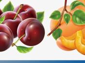 Artricenter: Batido cereza durazno para frenar artritis