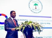 impulso inversión dado China African Energy Chamber logra tremendo éxito