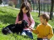 mascotas nuestros hijos