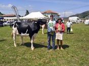 'Toscana',Gran Campeona Mejor Ubre Concurso Ganado Frisón Carriedo