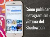 Cómo publicar instagram víctima Shadowban