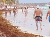 """Raúl Guerrero, fiscal deja esfuerzo huella """"El Hoyo Friusa"""", mientras concurrencia turística República Dominicana desploma exceso oferta, sargazo burbuja inmobiliaria anuncia presagio socia..."""