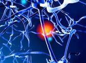 estudio cerebral revela tipo esquizofrenia similar enfermedad neurodegenerativa