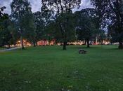 ciudad perros parques