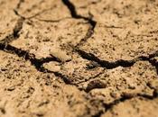Gobierno Chile decreta emergencia agrícola falta lluvias.