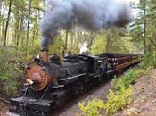 silbato tren (III)