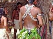 Incendios forestales Amazonas. crisis climática humana