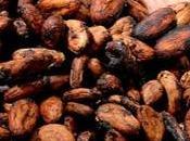 Cacao explotación infantil Costa Marfil