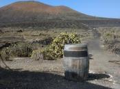 Manto Malvasía Volcánica 2018