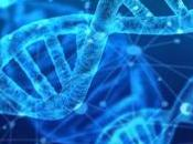 TDAH autismo comparten cambios mismos genes