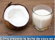 Artricenter: ¿Cómo preparar leche coco hogar?