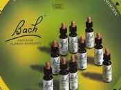 Flores Bach para ansiedad