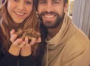#Colombia: #España: ¿Por #Shakira #Piqué CASAN tras años pareja? (FOTOS)