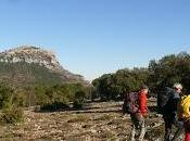 Exploraciones Segura Sierra Orcera