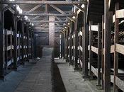 Condenan israelís robar recuerdos históricos Auschwitz