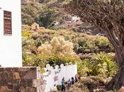 Drago Milenario Icod Vinos Tenerife