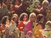 Hippie trasnochada