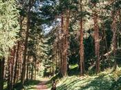 Cascada Butakovskiy, senderismo cerca Almaty