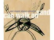 "Omri Ziegele ""Where's Africa Trio"": Walk Sand"