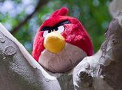 vida Angry Bird