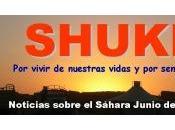 Resumen Noticias SHUKRAN junio
