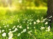 Espiritualidad, resiliencia crecimiento postraumático