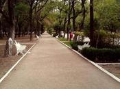 Apertura Parque Morales pospone alza casos COVID-19