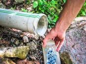 mejores botellas agua filtro purificadoras para trekking viajes [comparativa 2020]