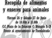 Recogida alimentos enseres para animales (Fuenlabrada)