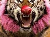 CONIL, Ciudad libre Circos Animales