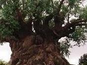 Árbol Formas Animales