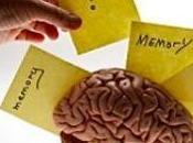 'Efecto Google' memoria cibernautas