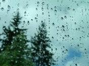 cualquiera…Abrió ojos. gotas lluvia s...