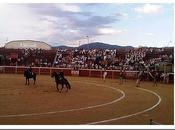 Feria Taurina Collado Villalba