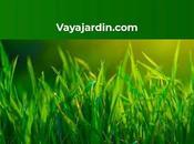 Pérgolas para casetas verano según Vayajardin.com