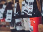 Cerveza Artesana para Principiantes: Todo debes saber, mano Mica