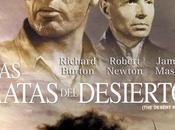 RATAS DESIERTO Robert Wise