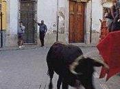 Castalla. Fiestas Roque Vaca 2011
