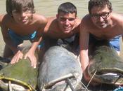Pesca siluros ebro