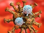 Defensas tope contra coronavirus
