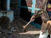 Haití: Celebración muertos preocupaciones COVID-19