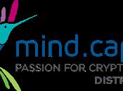 Guía para invertir Mind Capital