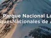 VIVO PARQUE NACIONAL LANÍN.Parque Nacional Lanín...