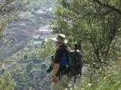Ruta Aguacate